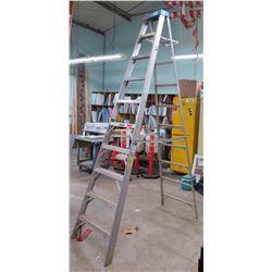 Werner Heavy Duty Industrial Step Ladder Type 1