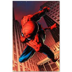 "Marvel Comics ""Amazing Spider-Man #641"" Numbered Limited Edition Giclee on Canvas by Joe Quesada wit"