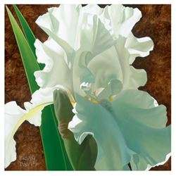 """Brian Davis, """"Solitary White Iris"""" Limited Edition Giclee on Canvas, Numbered and Hand Signed with C"""