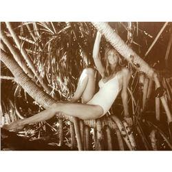 Vintage Supermodel Cheryl Tiegs Sepia Photo Print