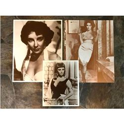 Movie Star Elizabeth Taylor Sepia Photo Prints