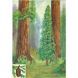 1920's Redwood Color Lithograph Print