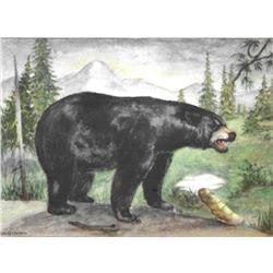 1920's Black Bear Color Lithograph Print