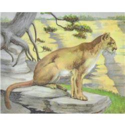1920's Mountain Lion, Color Lithograph Print