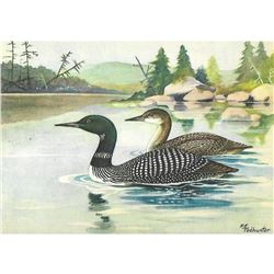 1920's Loon Color Lithograph Print