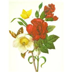 After Pierre-Jospeh Redoute, Floral Print, #35 Ellebore ( Clove, Carnation, Christmase Rose )