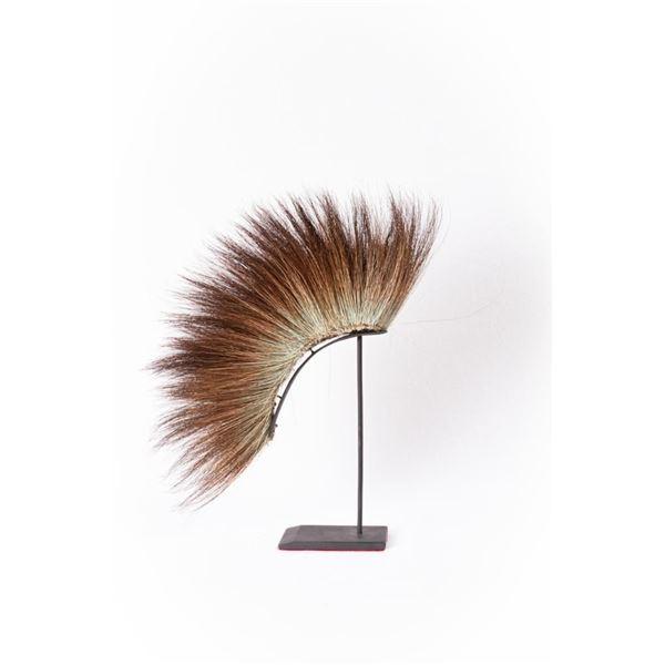 Northern Plains Moose Hair Roach