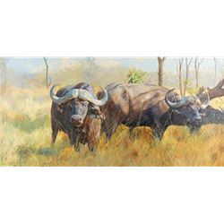 Dino Paravano, oil on canvas