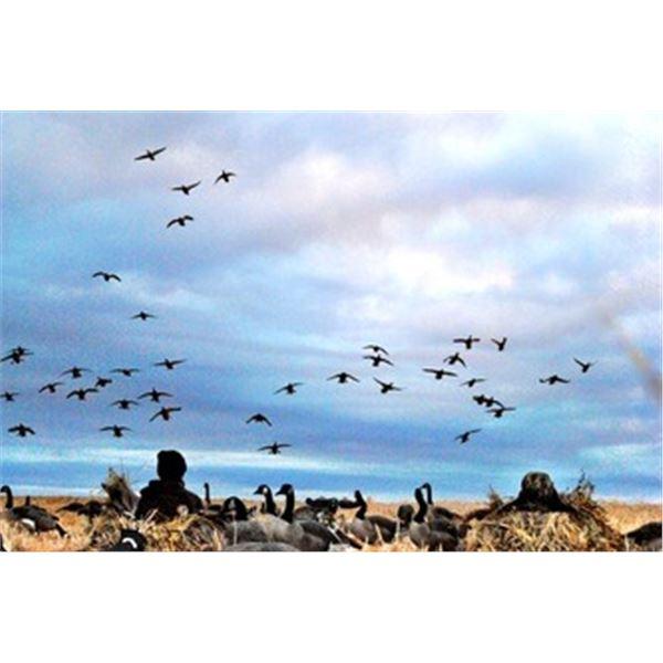 Waterfowl Hunt in Alberta, Canada