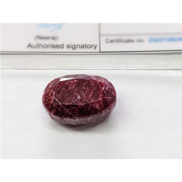 Large 43 Carat Authentic Natural Ruby Gemstone Oval Cut With Certificate of Authenticity