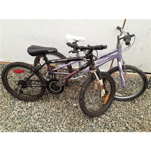 0B --  Lot of 2 Small Bicycles Purple & Black
