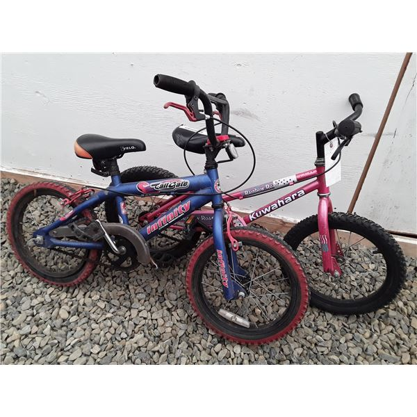0C --  Lot of 2 Small Bicycles Blue & Pink