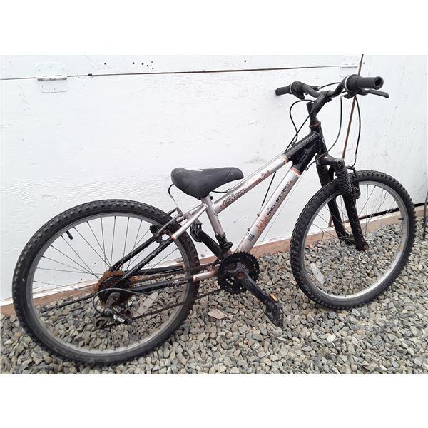 0D --  Small Silver Kickstart Bike