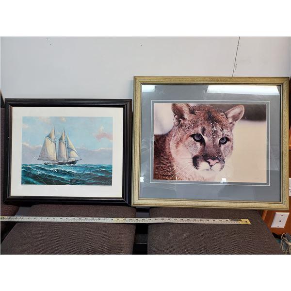 Print of Sail boat & Cougar