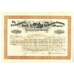Endowment Fund of the Life Insurance Co. of Virginia, 1893 Stock Certificate