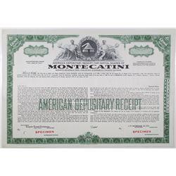 Montecatini, 1956 Specimen Stock Certificate