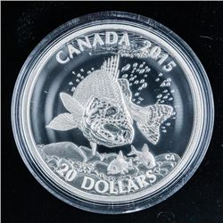 RCM 'Walleye' .999 Fine Silver $20.00 Coin  over 1 Troy ounce ASW