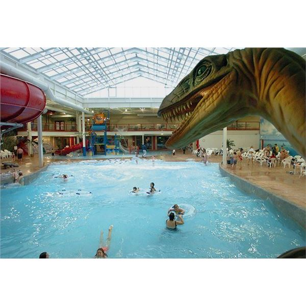 Four Passes to Raptor Reef Indoor Water Park