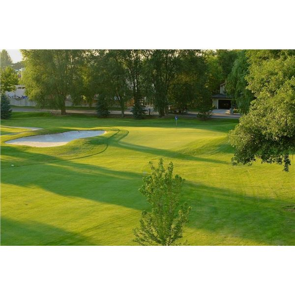 Golf for Four at The River Club