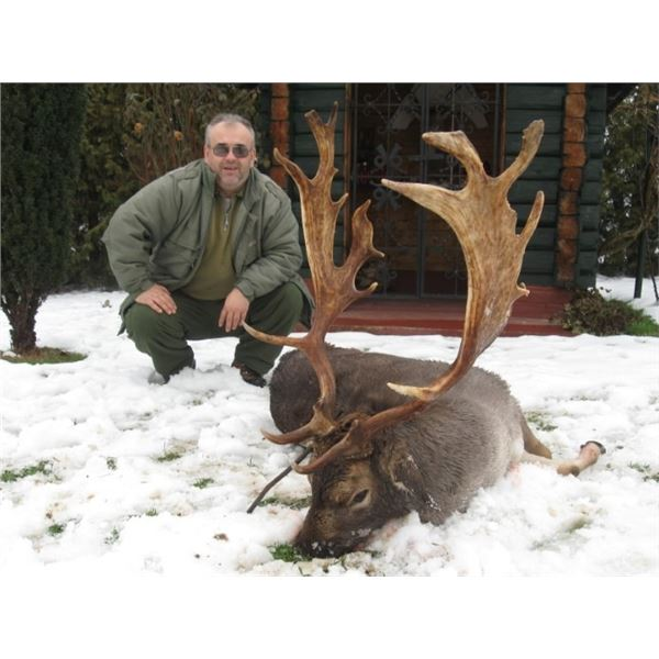 SAFARI ART NS  DONATES A FALLOW DEER IN SERBIA HUNT FOR 2 hunters or 1 hunter and 1 observer
