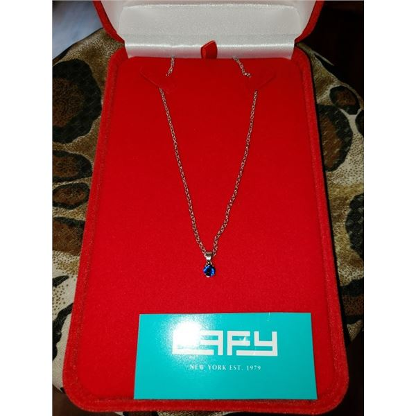 North Florida Chapter donates a ¼ ct Sapphire on a .925 sterling silver chain