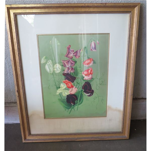 The Garden Botanical' Giclee Print by Anne Croy in Wood Frame 21 x25