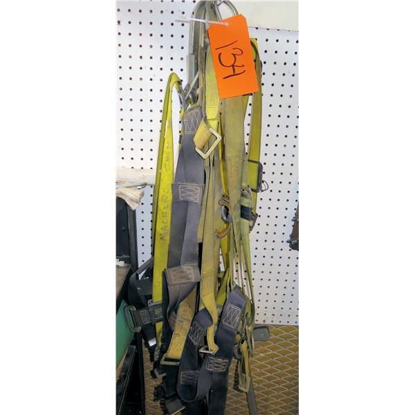 Multiple Canvas Tie-Down Straps w/ Hooks & Binders