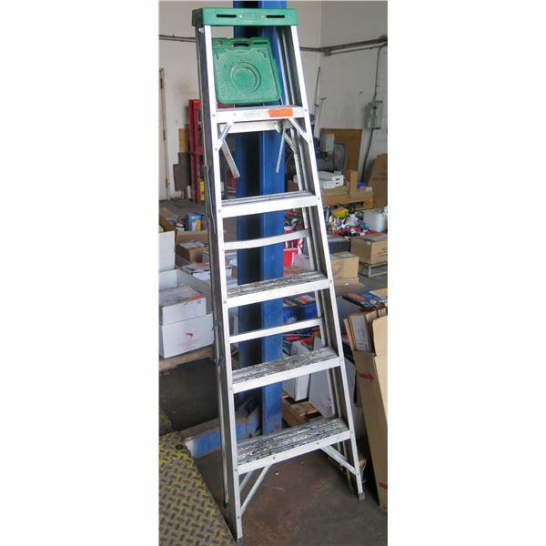 Werner Metal Step Ladder