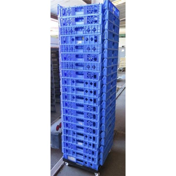 """Qty 40 Blue Stackable Square Heavy Plastic Bread Trays 4"""" Deep"""