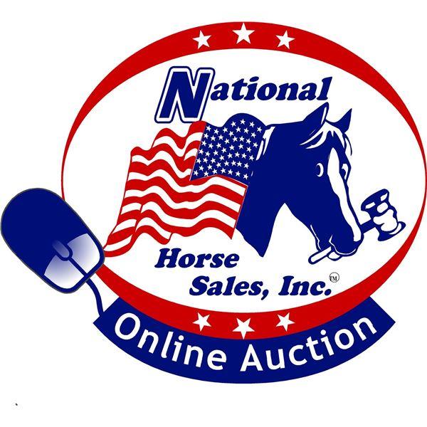A National Horse Sales Online Auction