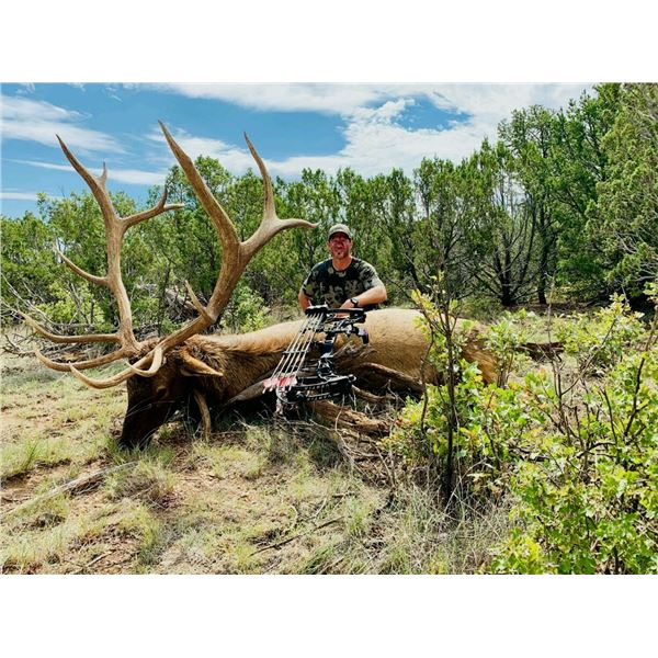 5-Day New Mexico Archery Elk Hunt for Two Hunters