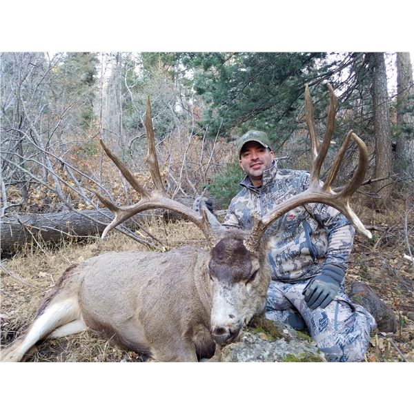 New Mexico 5-Day Rifle Mule Deer Hunt for Two Hunters