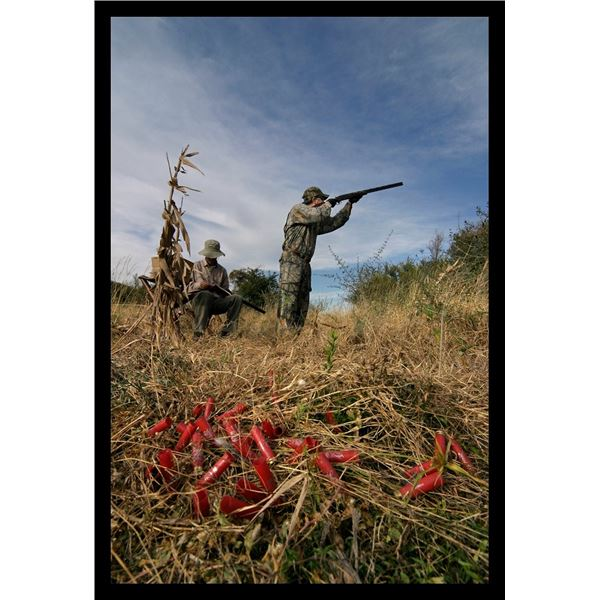 Argentina 3-Day Dove Hunt for Two Hunters