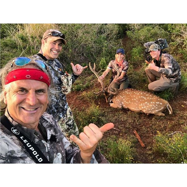 HIGH ADVENTURE CO: 2-Day Axis Deer Hunt for Two Hunters in Lanai, Hawaii