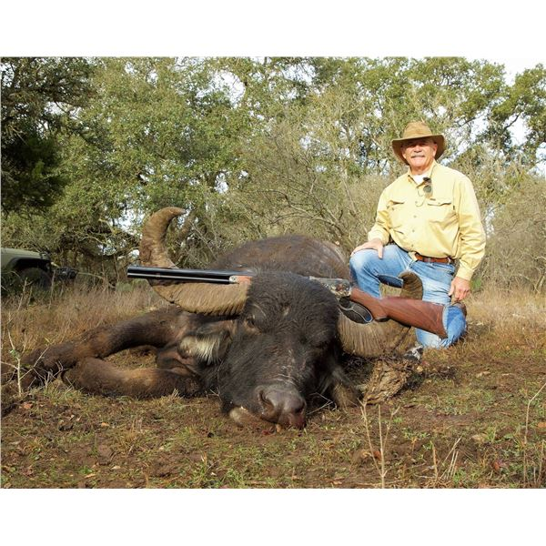 RECORDBUCK RANCH: 3-Day/2-Night Water Buffalo Hunt for One Hunter and One Non-Hunter in Texas