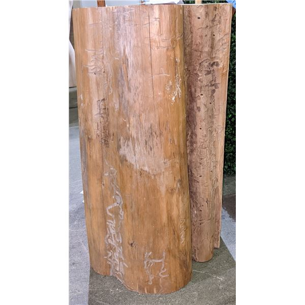 Wood Carve Tree Bark by Nuxalk carver Dean Mecham approx. 2 ft
