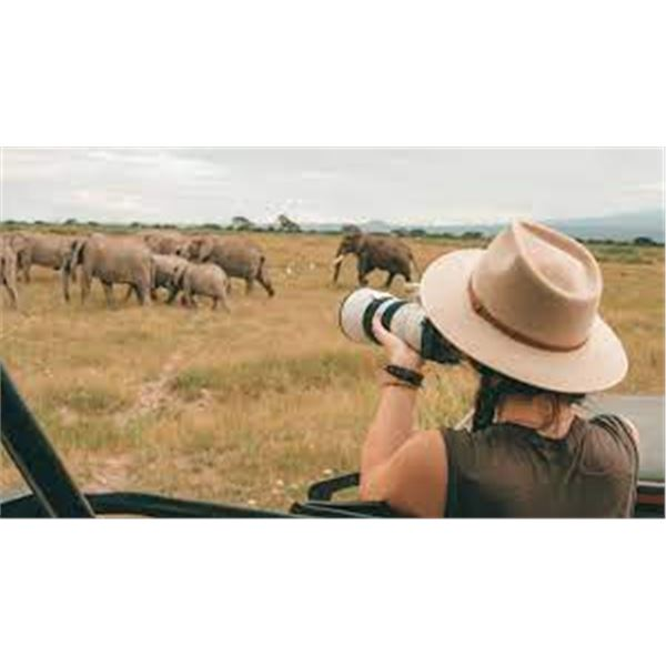 Photo Safari with Zeekoepan Safaris for 4 people