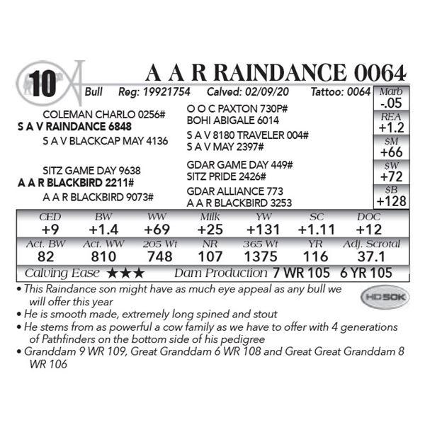 A A R Raindance 0064