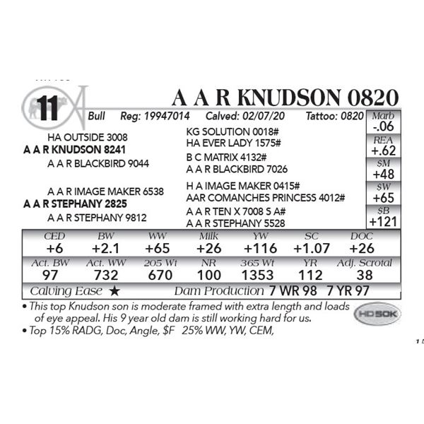 A A R Knudson 0820