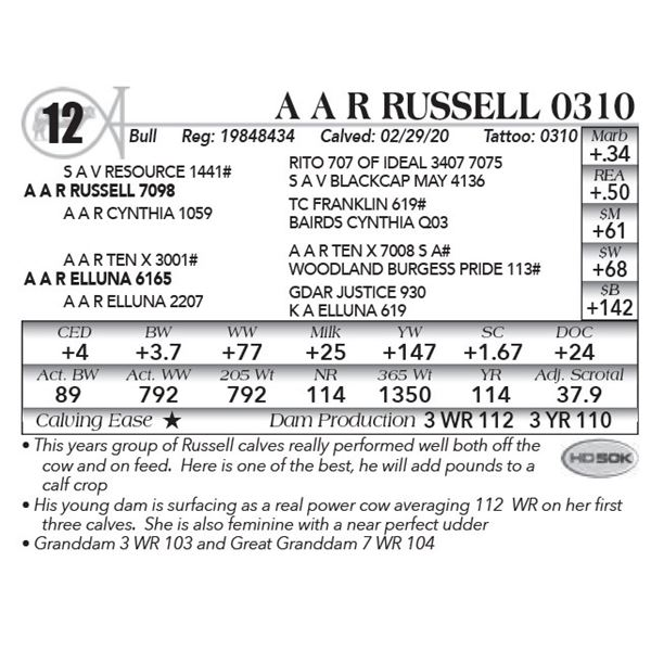 A A R Russell 0310