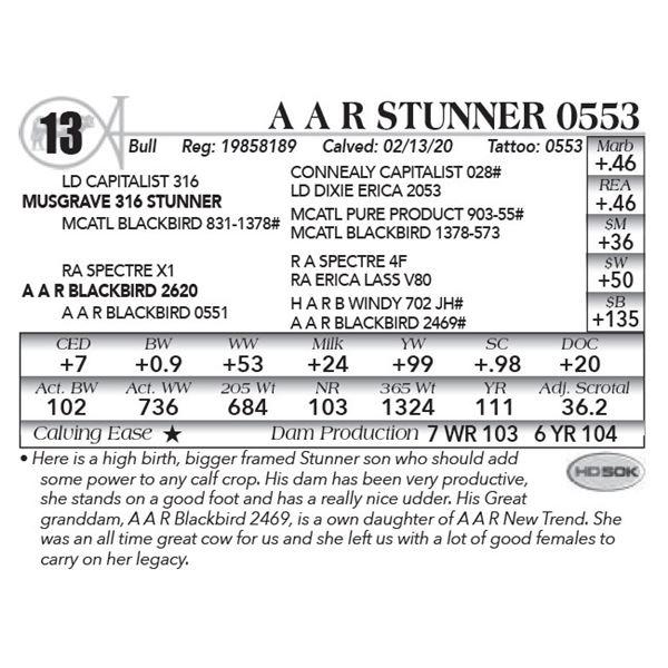 A A R Stunner 0553