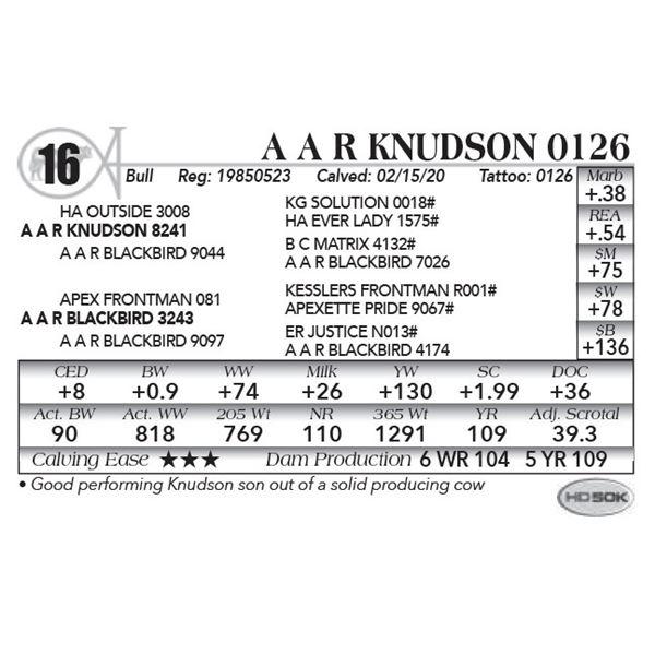 A A R Knudson 0126