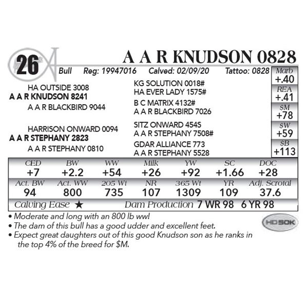 A A R Knudson 0828