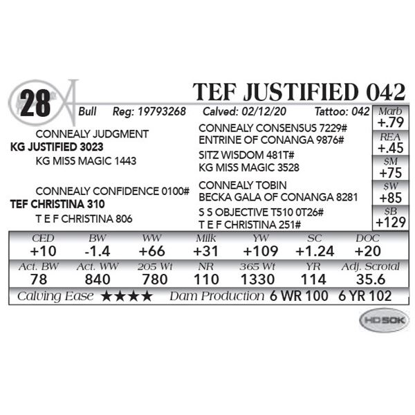 TEF Justified 042