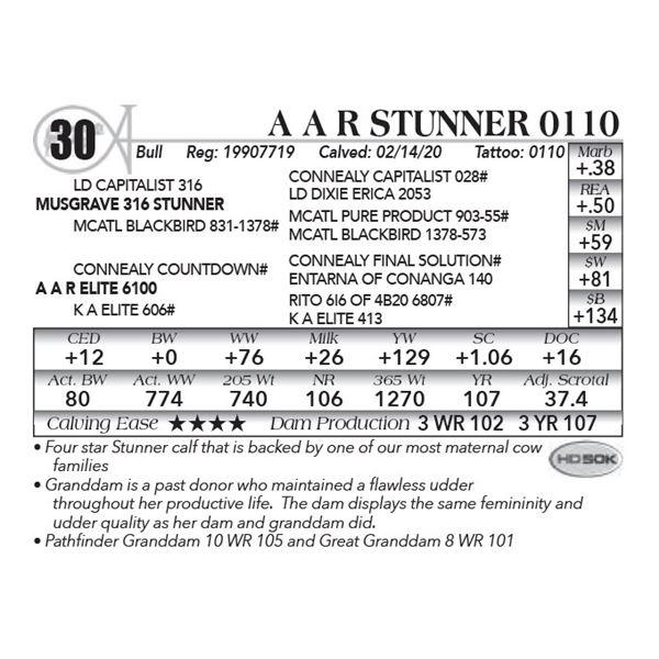 A A R Stunner 0110
