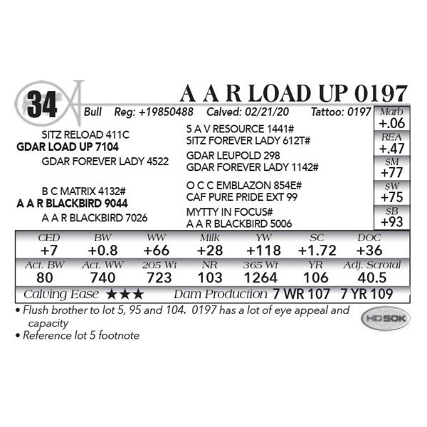 A A R Load Up 0197