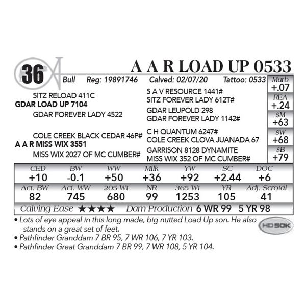 A A R Load Up 0533