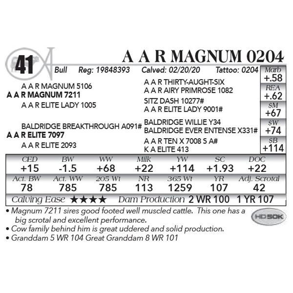 A A R Magnum 0204