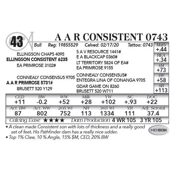 A A R Consistent 0743
