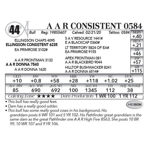 A A R Consistent 0584